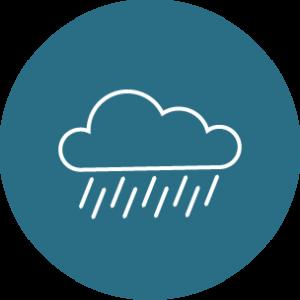 storm check icon